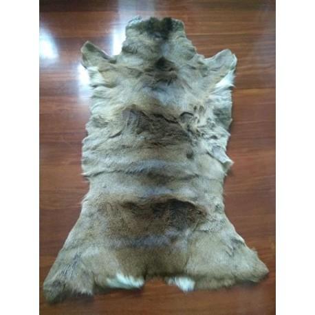 Roe deer fur rug 3 - Caza y Taxidermia