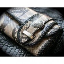 Reptilian crafts
