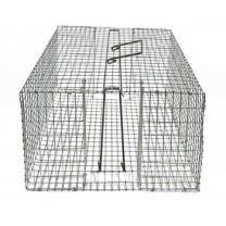 Trappole per uccelli caza y taxidermia for Trappola piccioni
